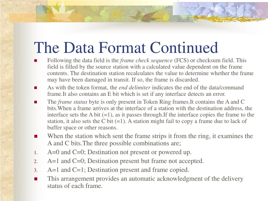 The Data Format Continued