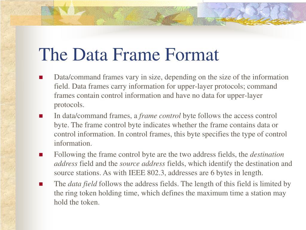 The Data Frame Format
