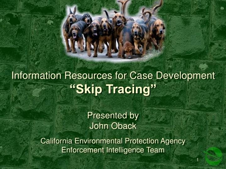 Information resources for case development skip tracing