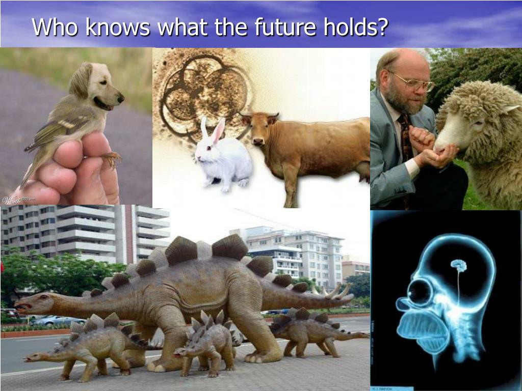 Who knows what the future holds?