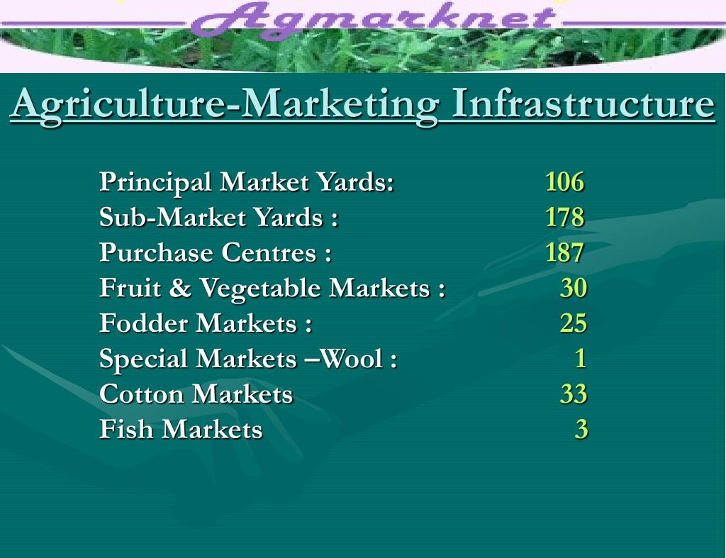 Agriculture-Marketing Infrastructure