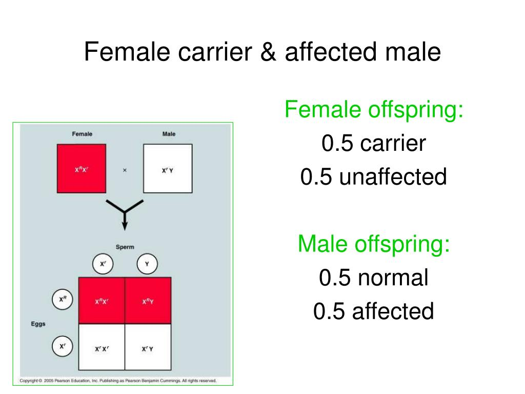 Female carrier & affected male