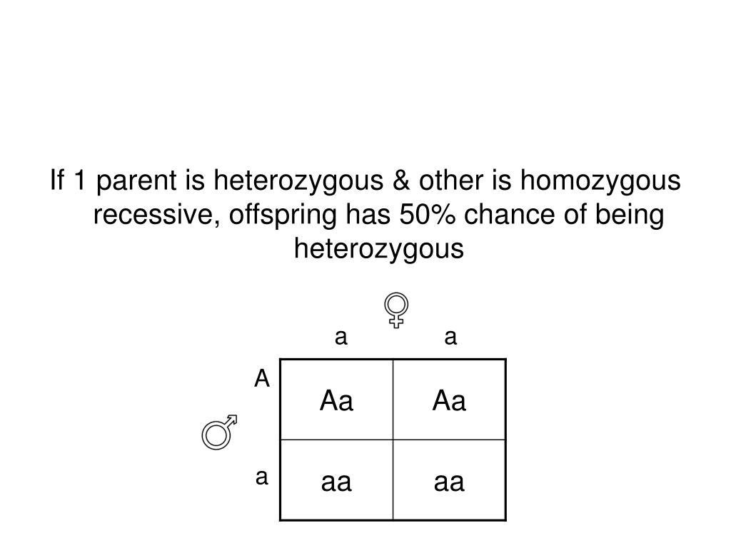 If 1 parent is heterozygous & other is homozygous recessive, offspring has 50% chance of being heterozygous