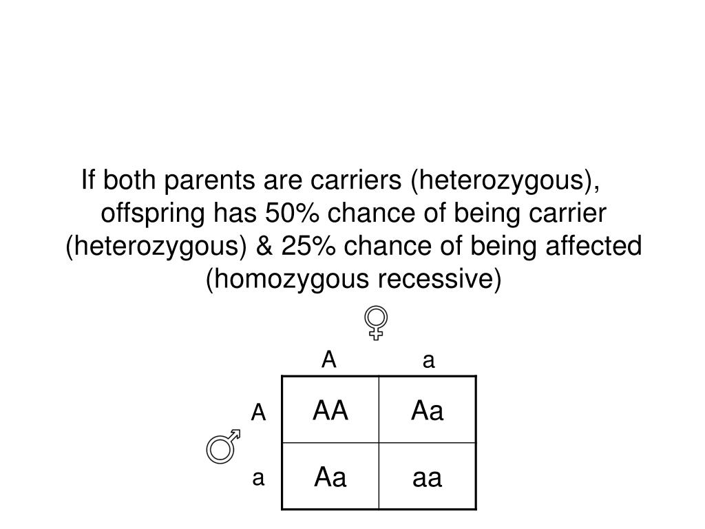 If both parents are carriers (heterozygous), offspring has 50% chance of being carrier (heterozygous) & 25% chance of being affected (homozygous recessive)