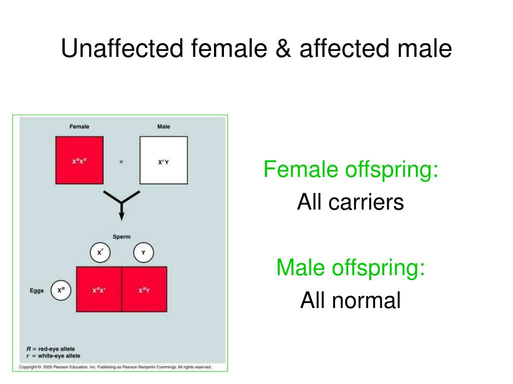 Unaffected female & affected male