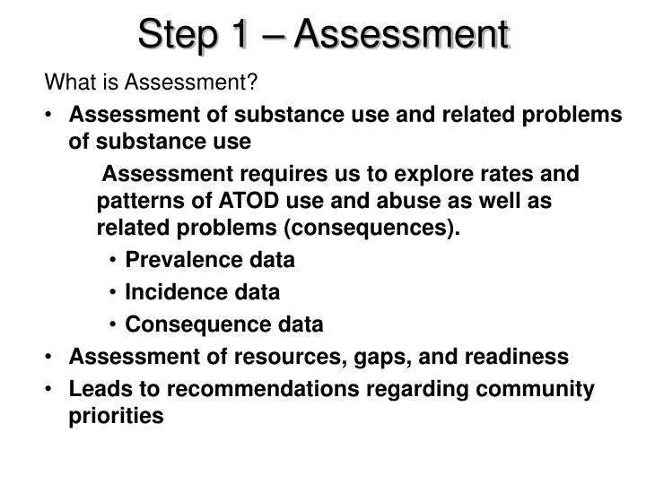 Step 1 – Assessment