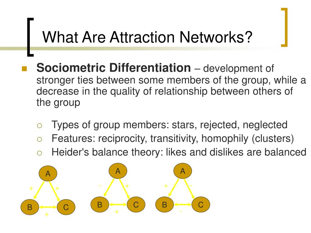 What Are Attraction Networks?