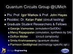 quantum circuits group @umich