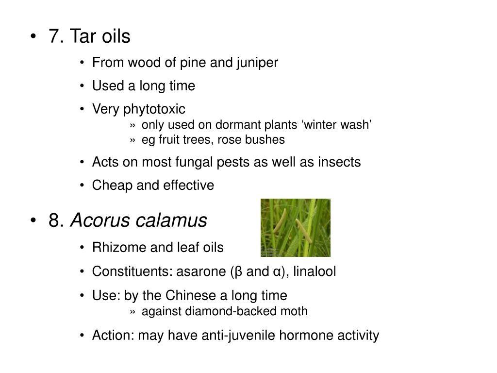 7. Tar oils