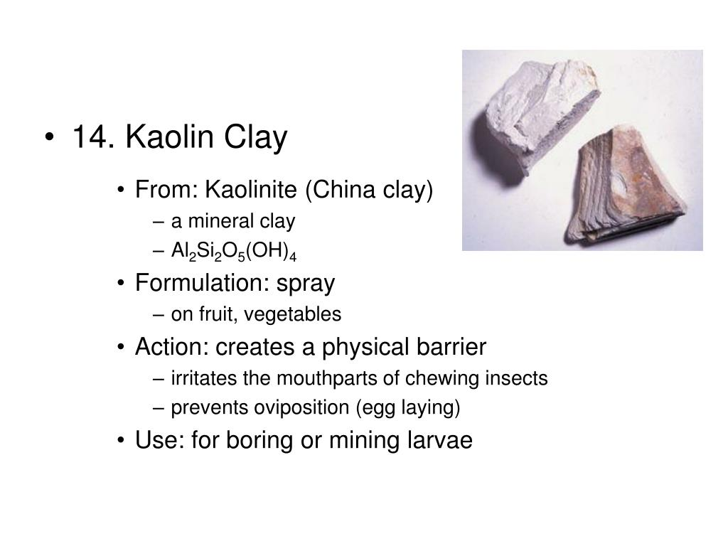 14. Kaolin Clay