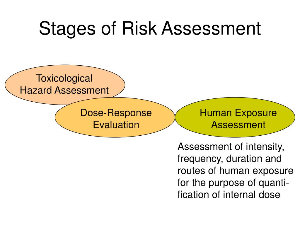 Stages of Risk Assessment