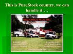 this is purestock country we can handle it