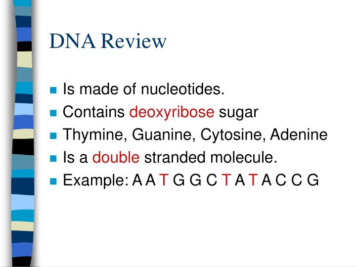 Dna review