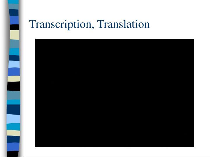Transcription, Translation