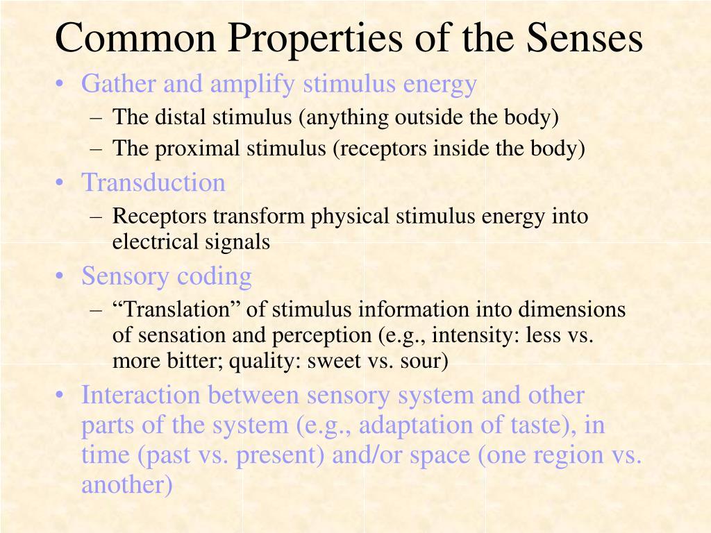 Common Properties of the Senses