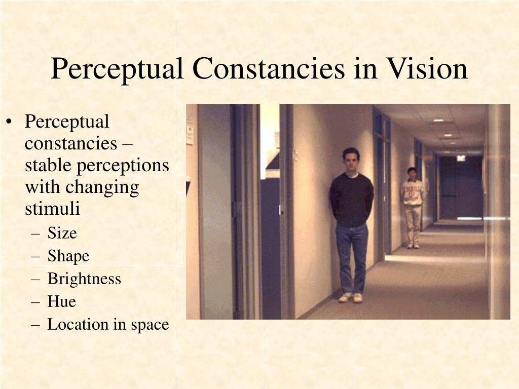Perceptual Constancies in Vision