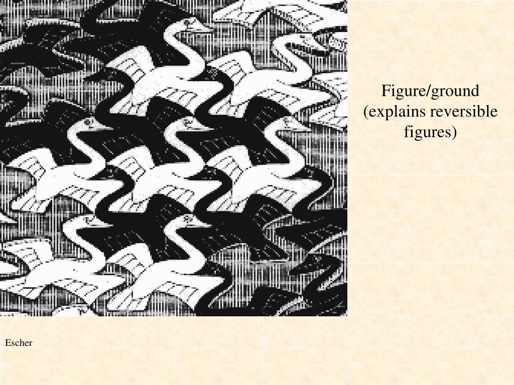 Figure/ground (explains reversible figures)