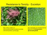 resistance to toxicity excretion