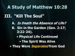 a study of matthew 10 2813