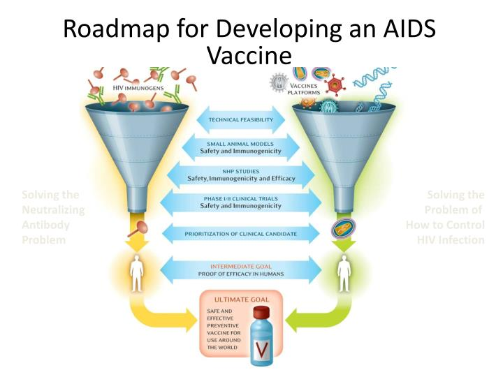 Roadmap for Developing an AIDS Vaccine