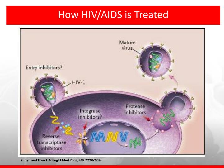 How HIV/AIDS is Treated