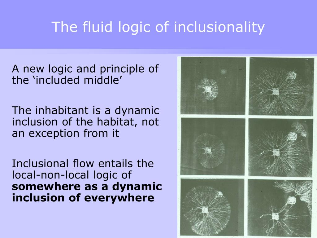 The fluid logic of inclusionality