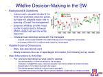 wildfire decision making in the sw