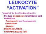 leukocyte activation