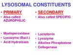 lysosomal constituents