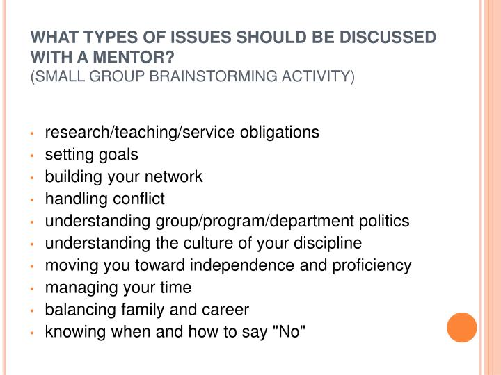 WHAT TYPES OF ISSUES SHOULD BE DISCUSSED WITH A MENTOR?