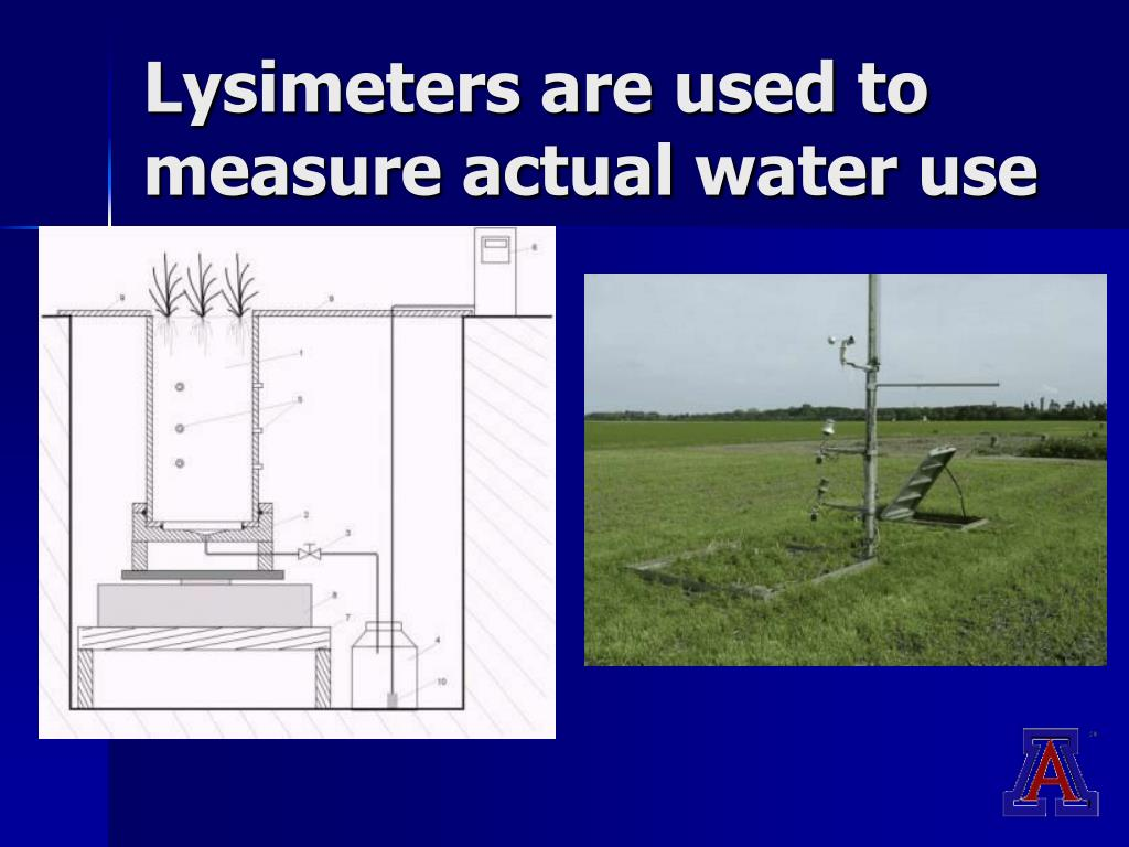 Lysimeters are used to measure actual water use