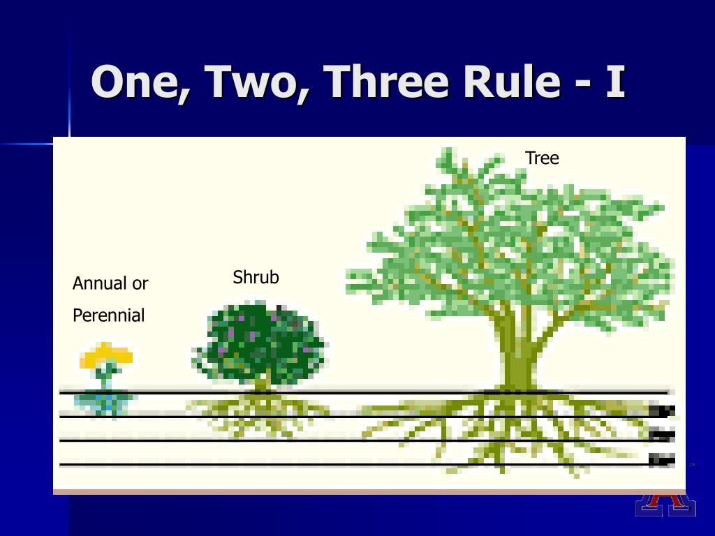 One, Two, Three Rule - I