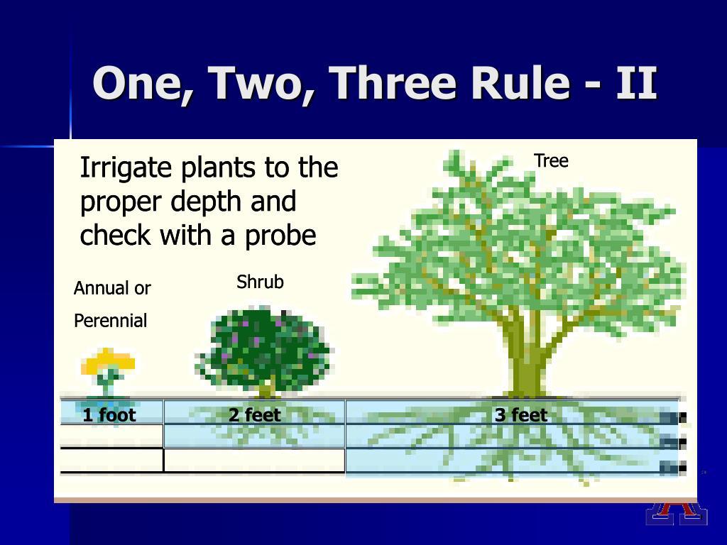 One, Two, Three Rule - II