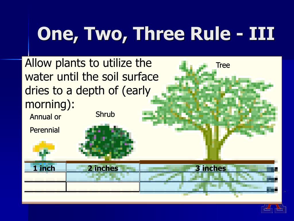 One, Two, Three Rule - III