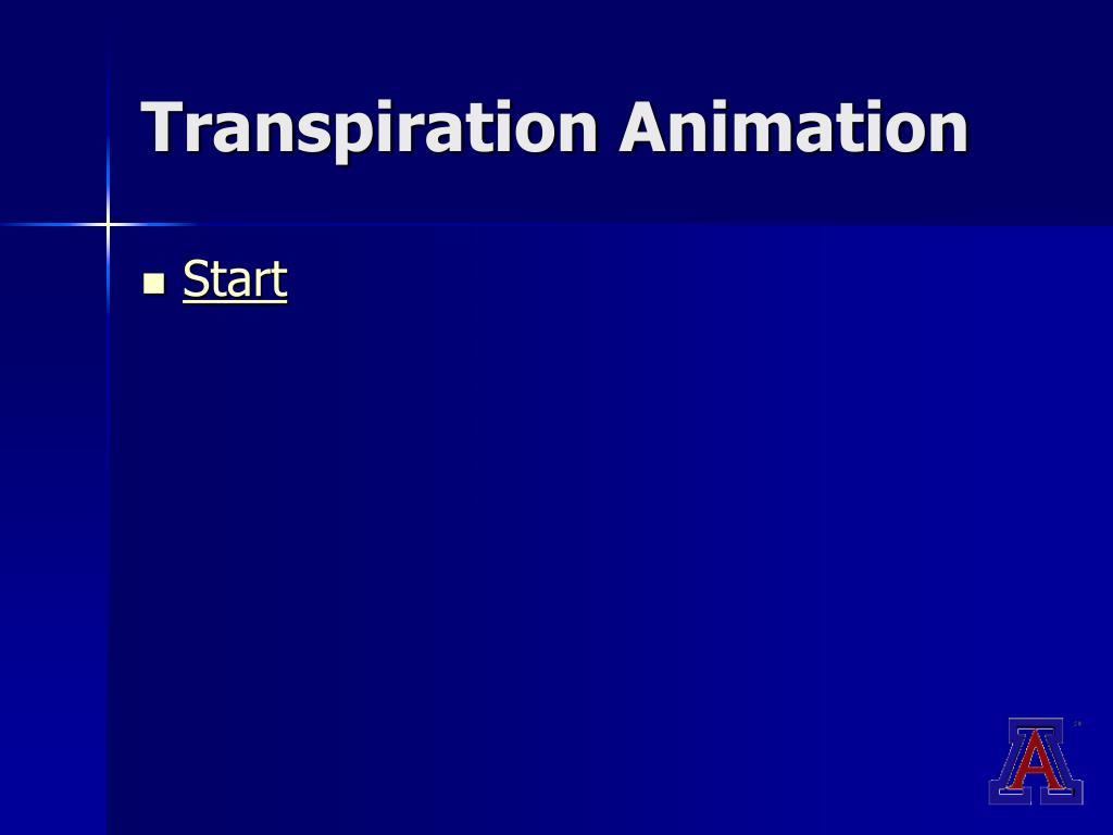 Transpiration Animation