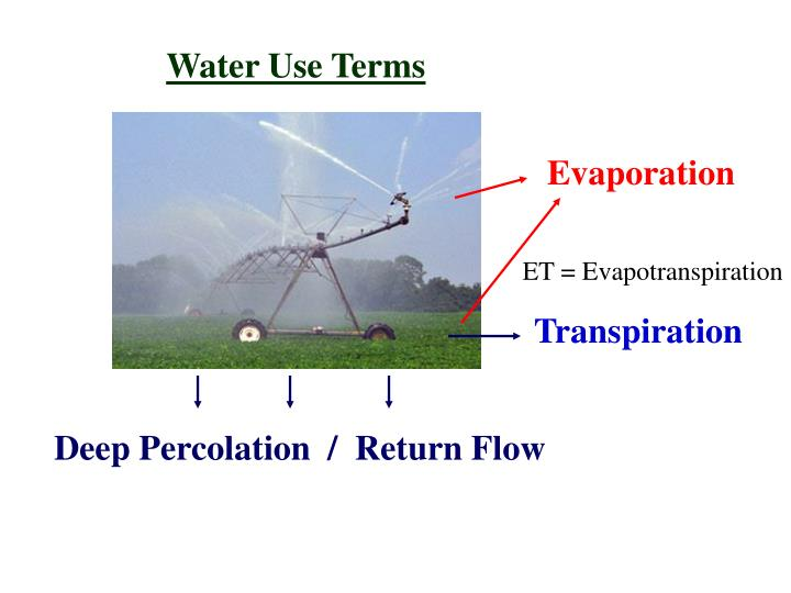 Water Use Terms