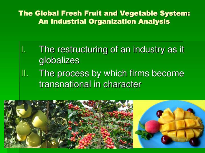 The global fresh fruit and vegetable system an industrial organization analysis
