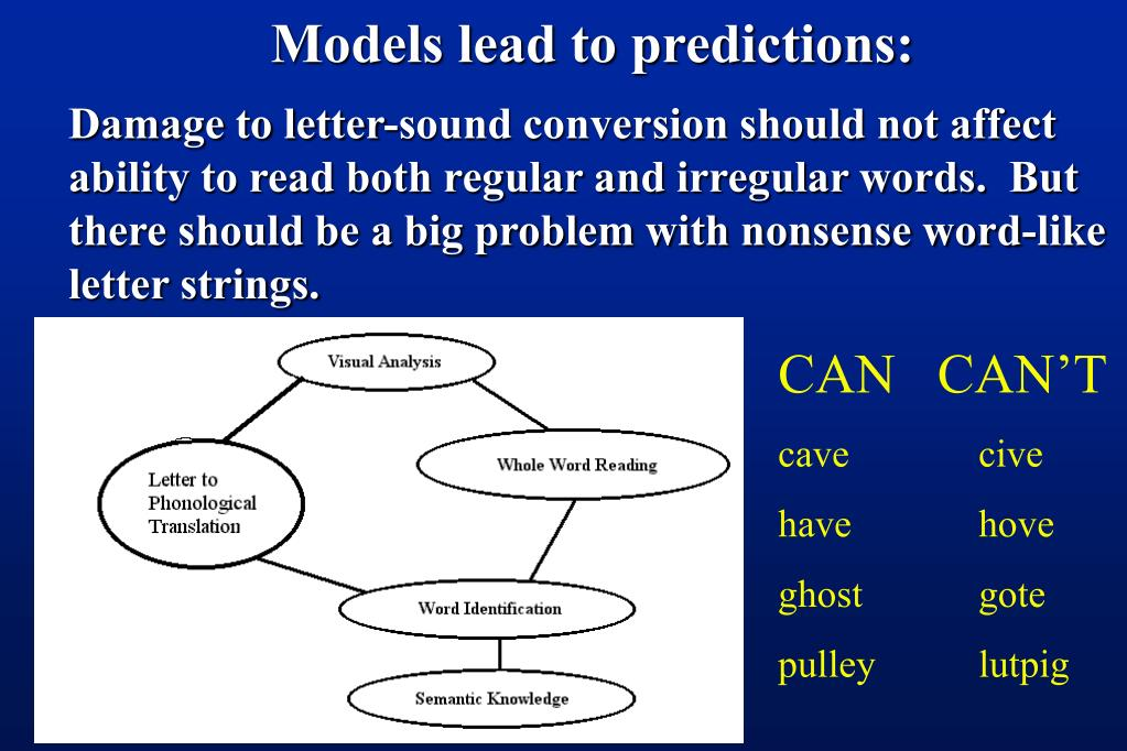 Models lead to predictions: