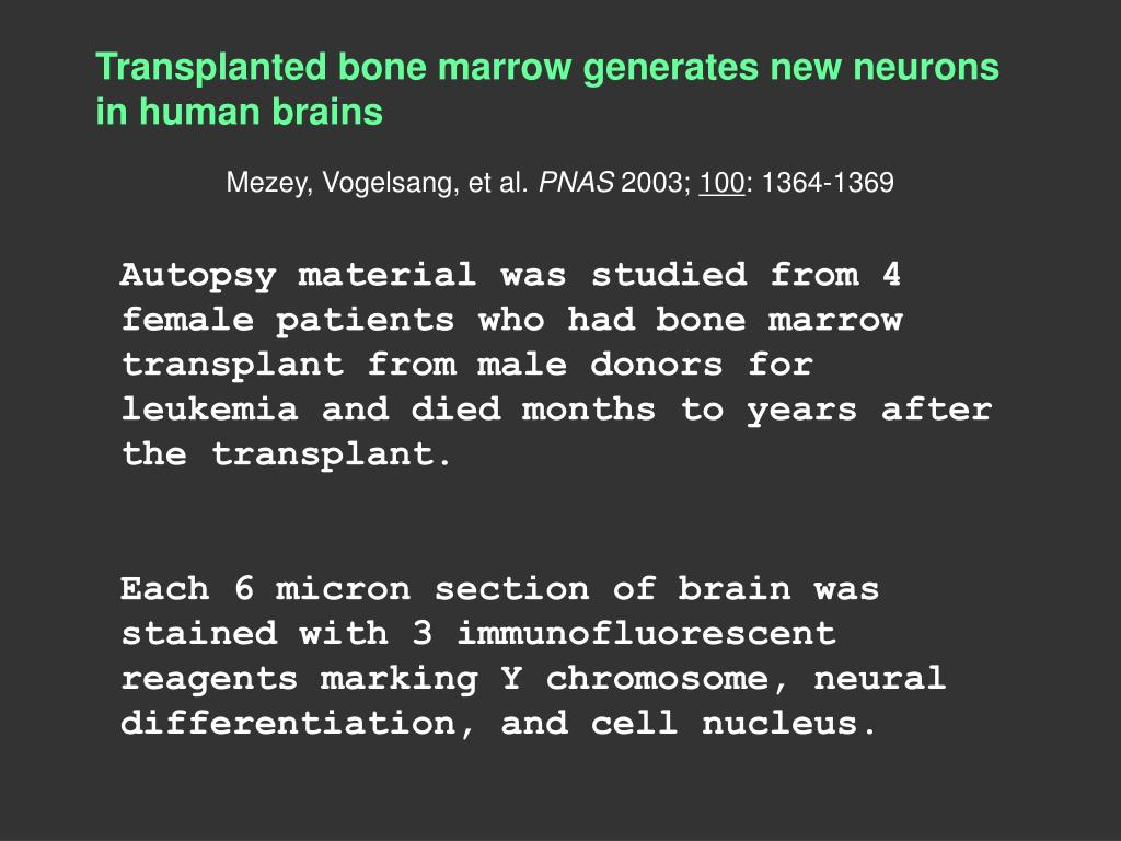 Transplanted bone marrow generates new neurons in human brains