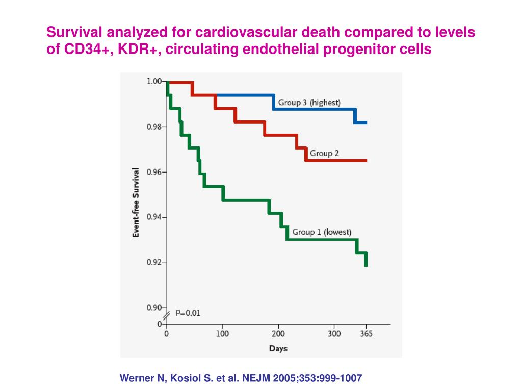 Survival analyzed for cardiovascular death compared to levels of CD34+, KDR+, circulating endothelial progenitor cells
