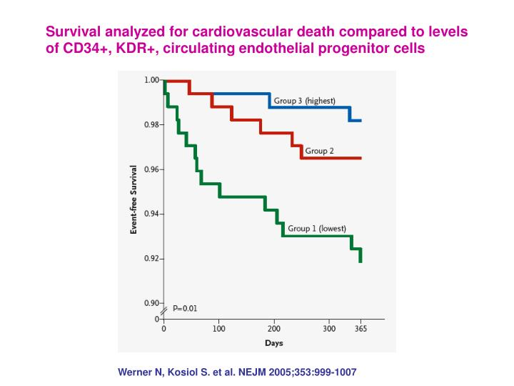 Survival analyzed for cardiovascular death compared to levels of CD34+, KDR+, circulating endothelia...
