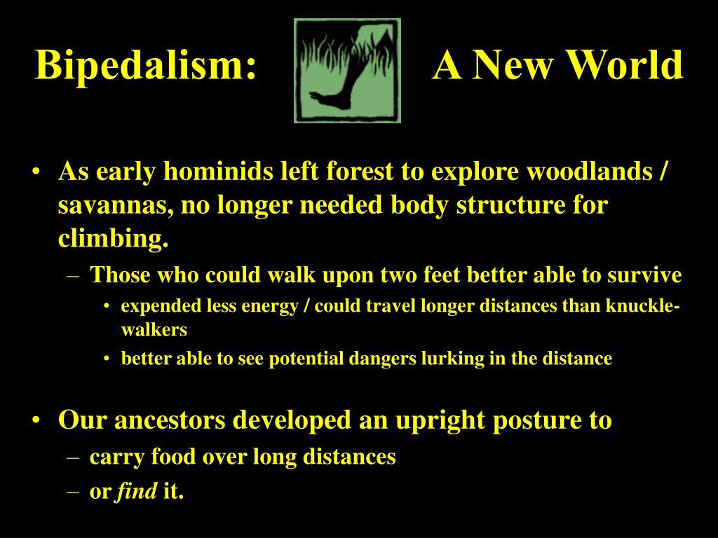 Bipedalism:                A New World
