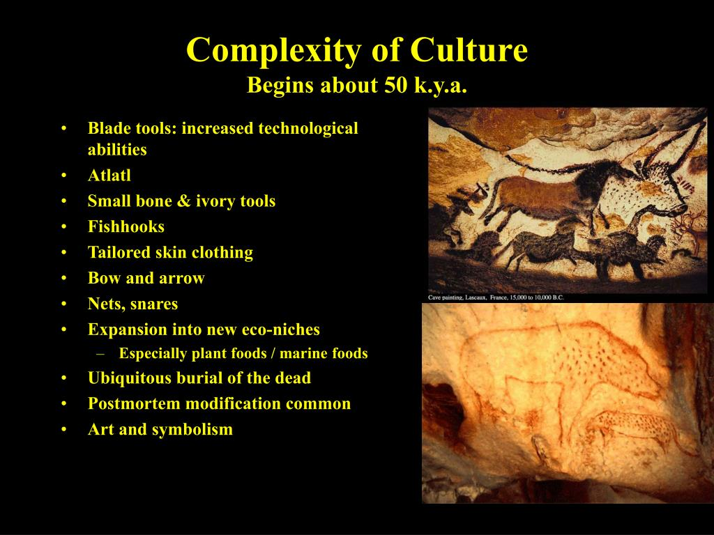 Complexity of Culture