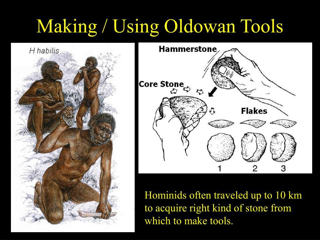 Making / Using Oldowan Tools