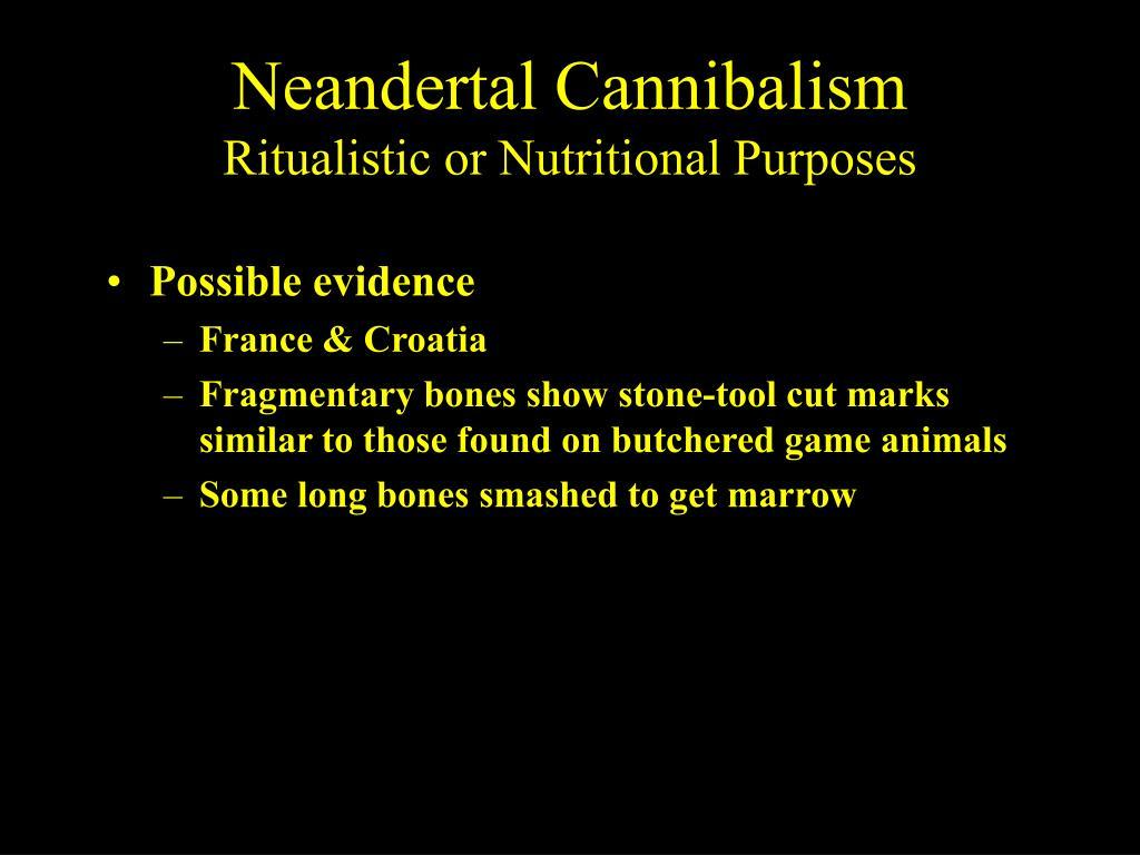 Neandertal Cannibalism