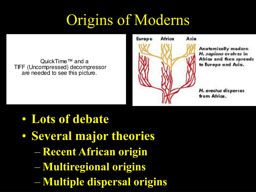 Origins of Moderns