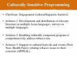 culturally sensitive programming