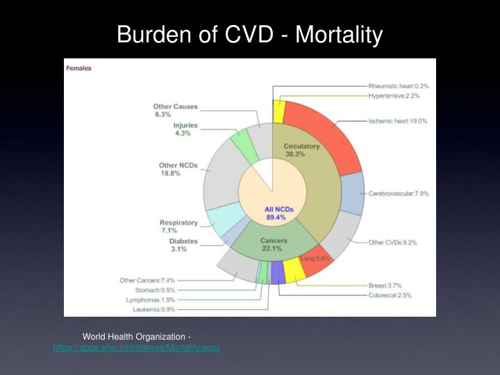 Burden of cvd mortality
