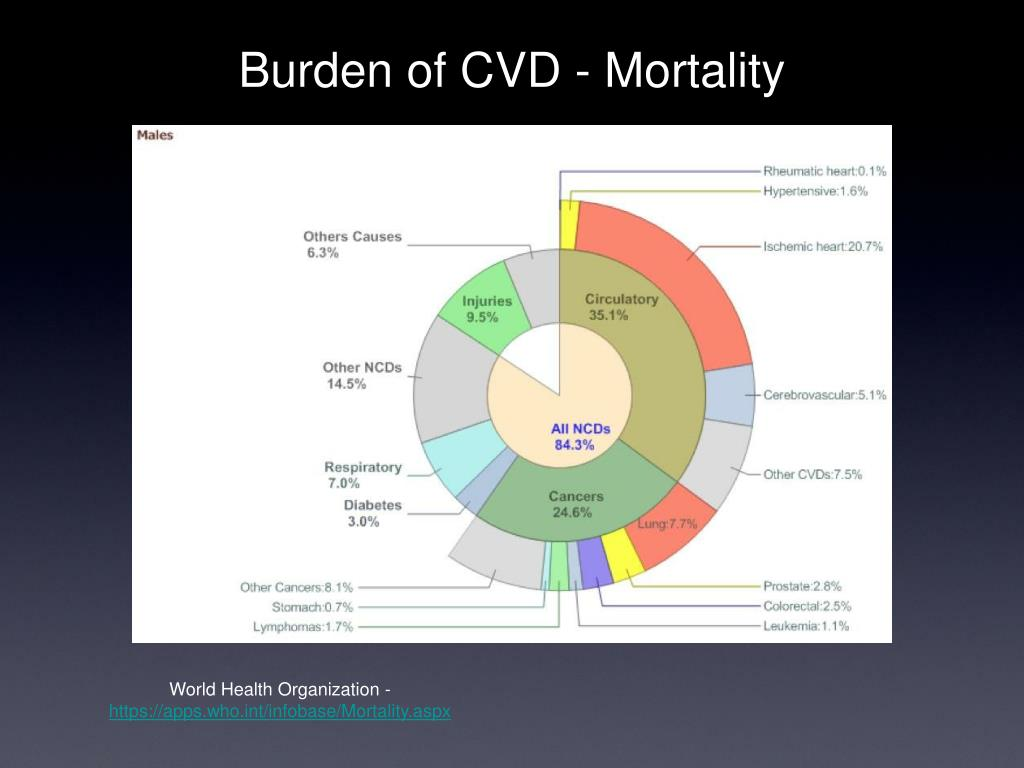 Burden of CVD - Mortality