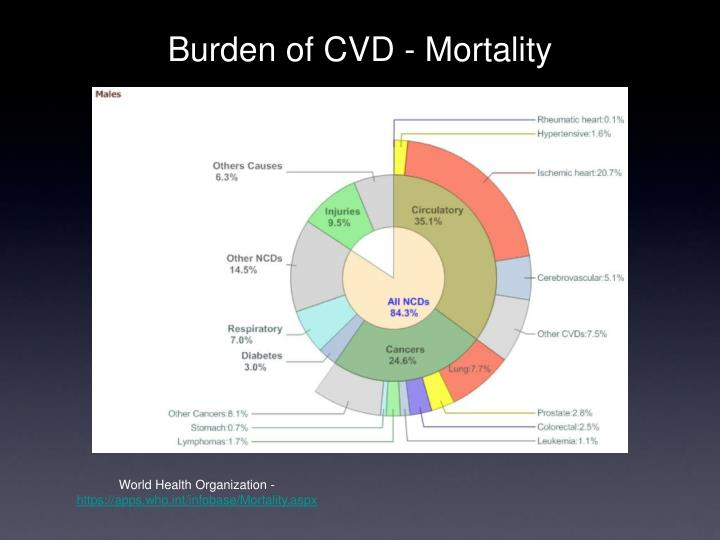 Burden of cvd mortality3